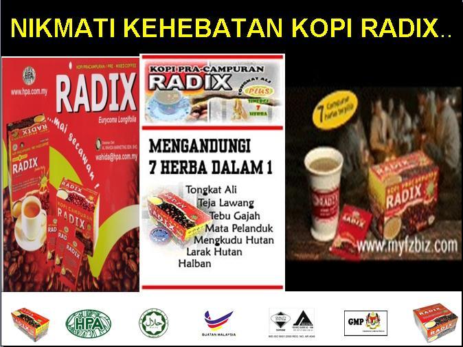 kehebatan radix